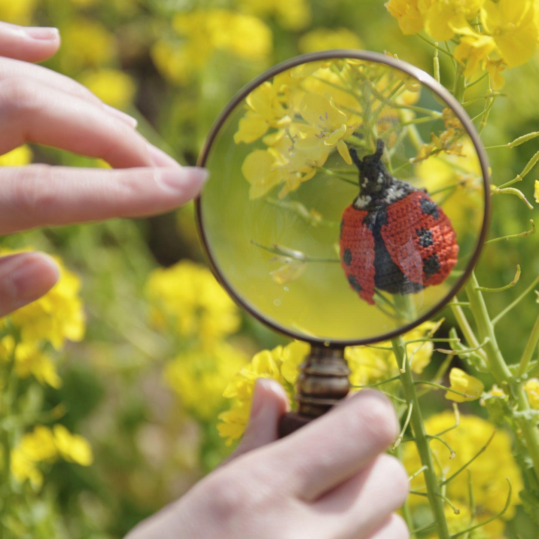 ハルノオト 小さな花と昆虫のブローチ展 ありがとうございました。